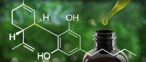 ¿Cuál es la diferencia entre el CBD y la nicotina?